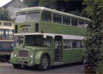 814SHW in NBC green livery with Flora