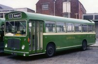 NDL767G in Tilling green livery