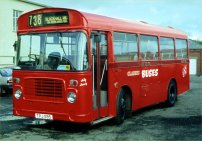 TPJ59S with Classic Buses