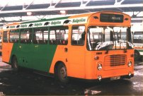 WAE187T in Badgerline livery
